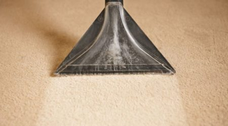 49045198 - professionally cleaning carpets