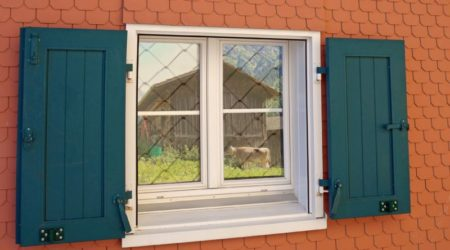 61978774 - window with green shutters and reflection of cow by barn